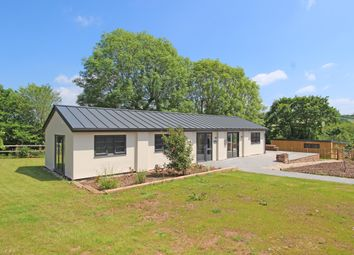 Thumbnail 2 bed detached bungalow to rent in Colebrook Lane, Cullompton