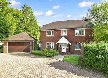 Thumbnail 4 bedroom detached house for sale in The Larches, East Grinstead, West Sussex