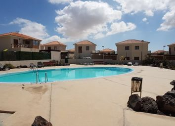 Thumbnail 1 bed villa for sale in Spain, Fuerteventura, La Oliva, Corralejo