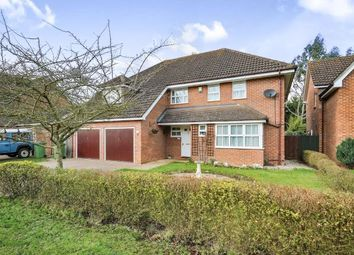 Thumbnail 5 bedroom detached house for sale in Thetford, Norfolk, .