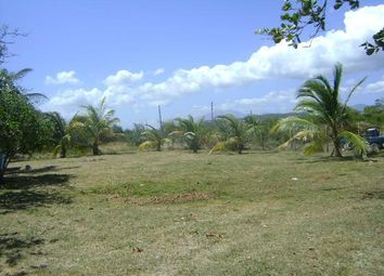 Thumbnail Land for sale in Morant Bay, Saint Thomas, Jamaica