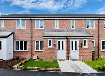 Thumbnail 2 bed terraced house for sale in Pras An Fenten, Lane, Newquay