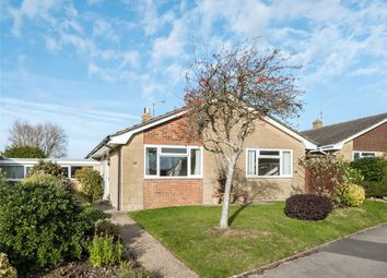 Thumbnail 2 bed bungalow for sale in Hollymoor Lane, Beaminster, Dorset