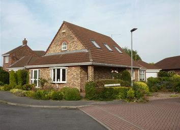 Thumbnail 3 bed detached house for sale in Camargue Avenue, Waltham, Grimsby