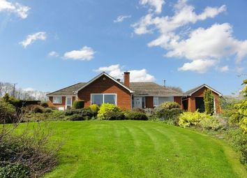 Thumbnail 3 bed detached bungalow to rent in Much Marcle, Ledbury