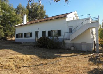 Thumbnail Detached house for sale in Castelo Branco, Castelo Branco (City), Castelo Branco, Central Portugal