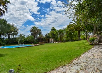 Thumbnail 4 bed country house for sale in Figueiral, Silves (Parish), Silves, Central Algarve, Portugal