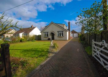 Thumbnail 4 bed detached bungalow for sale in Grange Road, Tiptree, Essex