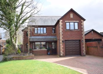 Thumbnail 4 bed property for sale in 8 Hazel Tree Court, Neath
