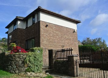 Thumbnail 4 bed detached house for sale in Viaduct Road, Garndiffaith, Pontypool