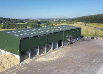 Thumbnail Light industrial for sale in Conexus West, Distributor Road, Poniel