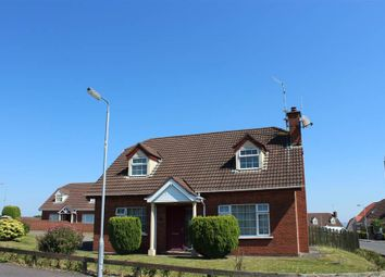 Thumbnail 4 bed detached house for sale in Slievenagarragh, Hilltown