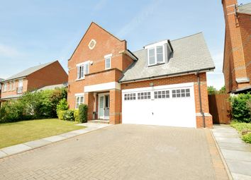 Thumbnail 4 bed detached house to rent in Farm Crescent, London Colney, St.Albans