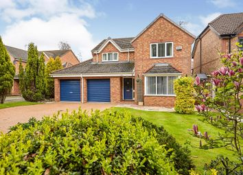 Thumbnail 4 bedroom detached house for sale in Heads Lane, Hessle