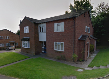 Thumbnail Studio to rent in Celandine Drive, Luton