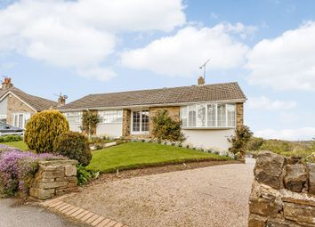 Thumbnail 3 bedroom bungalow for sale in Park Road, Thackley, Bradford, West Yorkshire