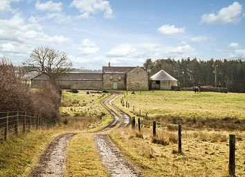 Thumbnail 4 bed barn conversion for sale in Newton Fell Barn, Newton, Stocksfield, Northumberland