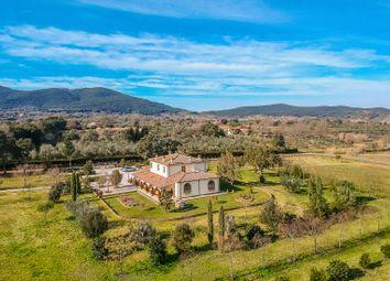 Thumbnail Villa for sale in Gavorrano, Grosseto, Toscana