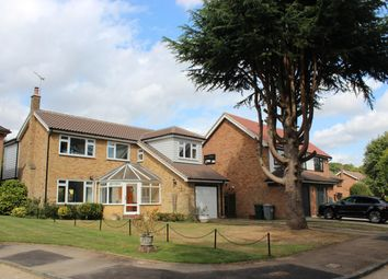 Thumbnail 4 bed detached house to rent in Eleanor Way, Warley, Brentwood