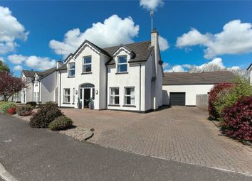 Thumbnail 4 bedroom detached house for sale in Motte Farm, Broughshane, Ballymena, County Antrim