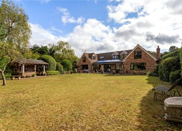 4 bed detached house for sale in Oxted Green, Milford, Godalming, Surrey GU8