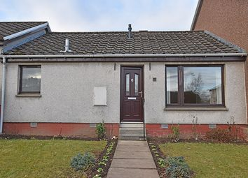 Thumbnail 1 bed terraced bungalow to rent in Harriet Row, Blairgowrie