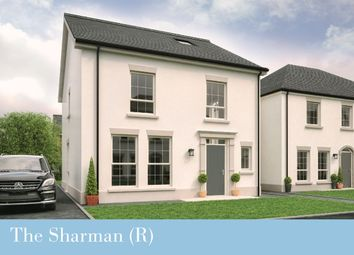 Thumbnail 4 bedroom detached house for sale in Dillon/Harlow Green, Meeting Street, Moira