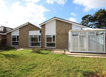 Thumbnail 4 bedroom bungalow to rent in St Michaels Road, Broxbourne