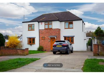 Thumbnail 4 bed detached house to rent in Poverest Road, Orpington
