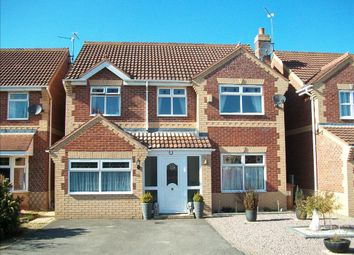 Thumbnail 4 bedroom detached house to rent in Balintore Rise, Orton Southgate, Peterborough