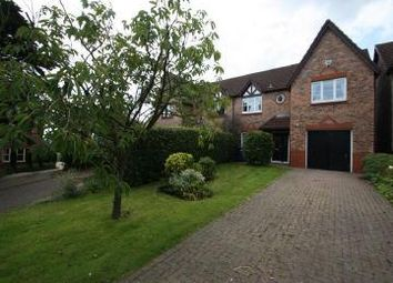 Thumbnail 4 bed semi-detached house to rent in Hayside Walk, Malpas