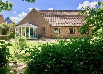 Thumbnail 4 bed detached bungalow to rent in Mayfield, Rowledge, Farnham, Surrey