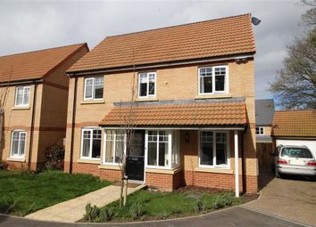 Thumbnail 5 bedroom detached house for sale in York Rise, Bideford