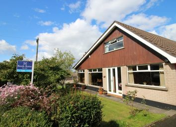 Thumbnail 4 bed detached house for sale in Glenside Park, Drumbo, Lisburn