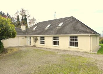 Thumbnail 7 bed country house for sale in Clonageera, Durrow, Laois