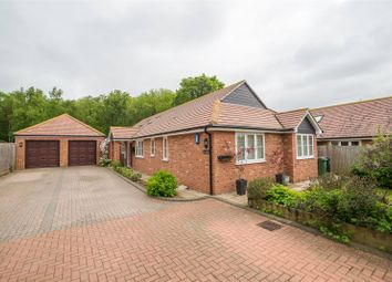 Thumbnail 4 bed detached bungalow for sale in The Brambles, Maidstone, Kent