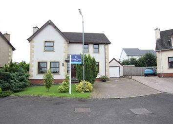 Thumbnail 3 bed detached house for sale in Elmwood Grove, Newtownabbey