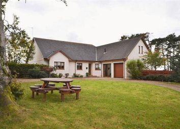 Thumbnail 4 bed detached house for sale in Filstone, Hollybush, Ayr