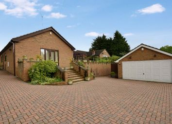 Thumbnail 3 bed detached bungalow to rent in The Abbes Close, Burghwallis, Doncaster