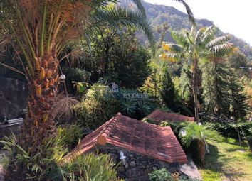 Thumbnail Detached house for sale in Tabua, Ribeira Brava, Ilha Da Madeira