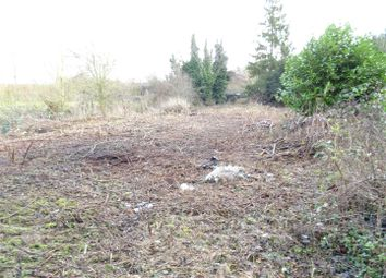 Thumbnail Land for sale in Coddenham Road, Needham Market, Ipswich