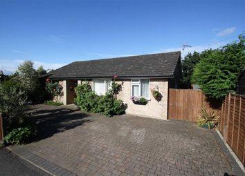 Thumbnail 3 bed detached bungalow for sale in Avenue Close, Liphook, Hampshire