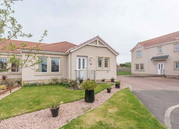 Thumbnail 3 bed bungalow for sale in Teal Place, Montrose