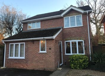 Thumbnail 4 bed property to rent in Martins Wood, Chineham, Basingstoke