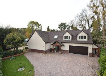 Thumbnail 4 bed detached house for sale in Holt Fleet, Worcester, Worcestershire