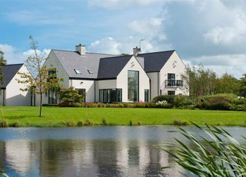 Thumbnail 5 bed detached house for sale in Hillsborough Road, Moneyrea, Newtownards
