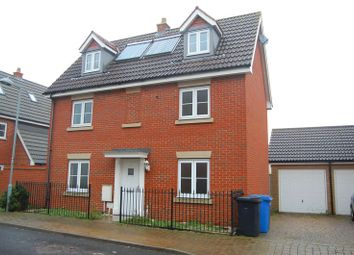 Thumbnail 4 bedroom detached house to rent in Provan Court, Ipswich