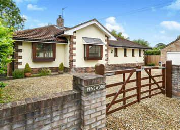Thumbnail 3 bed detached bungalow for sale in Lords Moor Lane, Strensall, York