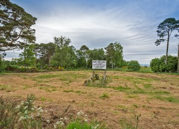 Thumbnail Land for sale in Fearn, Tain