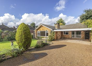 Thumbnail 4 bed detached bungalow to rent in Lyne, Chertsey